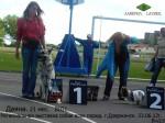 ВЕО Даяна (возраст 21 мес.) на Региональной выставке собак всех пород. BIG1. Дзержинск. 23.06.12г. Хендлер Савицкая Ю.