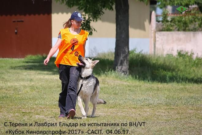 С.Тереня и ВЕО Лавбрил Ельдар, испытания по ВН