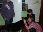 ВЕО Хельхаус Лавиния знакомится с нашими гостями детьми. 01.10.11г.