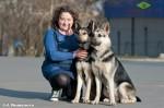 Юлия со своими ВЕО: Стивит Армаст Максима Дерза (слева на фото) и Лавбрил Армония (справа)
