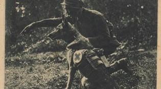 Боец с собакой-санитаром
