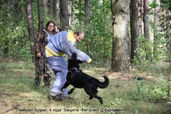 Лавбрил Бумер, 4 года. Защита. 16.09.17 (1)