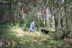 Лавбрил Бумер, 4 года. Защита. 16.09.17 (5)