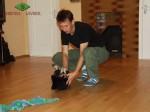 Тестирование щенка ВЕО в 7 недель