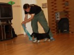 Тестирование щенка ВЕО возрастом 7 недель