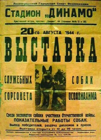 Афиша выставки служебных собак 20.08.1944г.