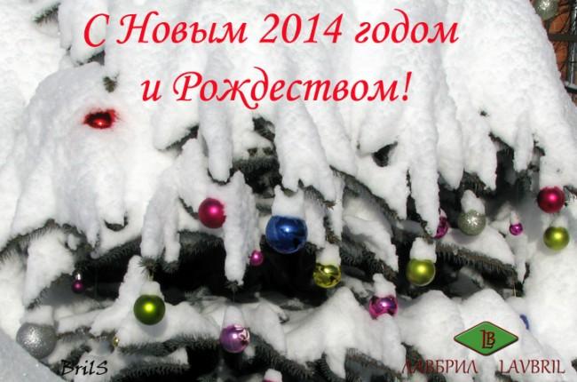 С Новым 2014 годом и Рождеством!