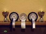 Награды Лавбрил Бравы с Международной выставки собак 8 и 9 марта 2014. г.Вильнюс..