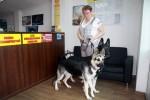 Лавбрилики Байкер и Берегиня в помещении автосервиса.