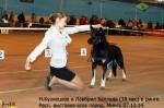 Лавбрил Баллада (18 мес.) и Н.Кузнецова в ринге. Минск.07.12.14. 436.1.