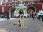 Оздер Русский Риск в городе на прогулке.