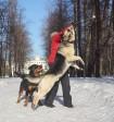 Оздер Русский Риск. Собака-летяга. 2011г. Фото М.Жадиной.