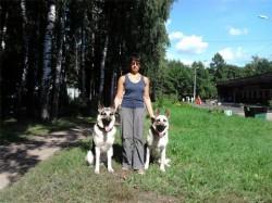 Н.Войтенко с Оздером Русский Риск и Лютар Мухтаром.Тула, август 2011.