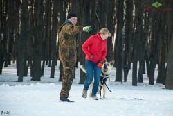 Светлана и Ельдар на дрессировке у В.Новика.
