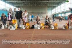 ВЕО Лавбрил Геролена - 4-е место выставки 17.04.16..