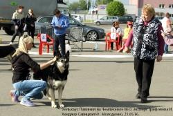 Хельхаус Лавиния на Чемпионате ВЕО. 21.05.16. 170Мб