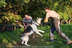 veo-lavbril-eleazar-18-mes-figurant-a-boloshko