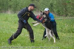 veo-lavbril-gardarika-21mes-na-zanyatiyah-s-a-kaskovym-foto-m-andreevoj