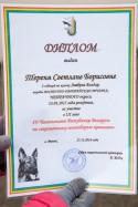 diplom-uchastnika-chempionata-kinologov