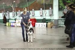 lavbril-gardarika-i-yu-savitskaya-v-ringe-minsk-03-12-16