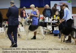 veo-lavbril-eleazar-v-tsentre-tsatsib-26-11-16-minsk