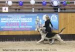 veo-lavbril-eleazar-tsatsib-26-11-16-minsk-hendler-yu-savitskaya