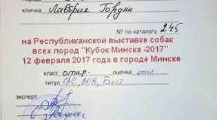 Диплом Лавбрил Гордана. Минск, 12.02.17.