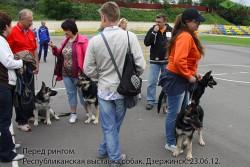 Перед рингом. Респ.выставка собак. Дзержинск. 23.06.12.