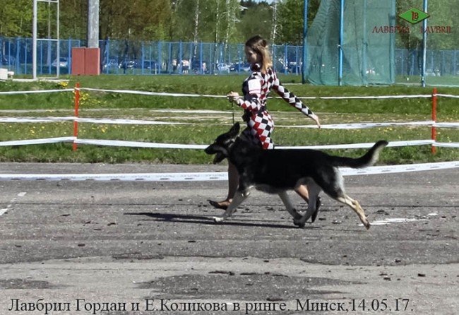Лавбрил Гордан и Е. Коликова в ринге.14.05.17.