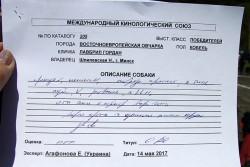 Описание Лавбрил Гордана. Эксперт Агафонова.14.05.17.
