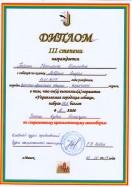 Диплом УГС. Лавбрил Ельдар.