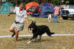 Лавбрил Баллада (4года) на Респ. выст.собак, 19.08.17.