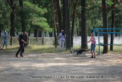 Лавбрил Ельдар. Тестир-е. Чемпионат ВЕО 19.08.17. (2)
