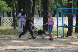 Лавбрил Ельдар. Тестир-е. Чемпионат ВЕО 19.08.17. (3)