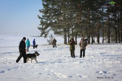 Чемпионат БОСКО 24.02.18. ВЕО Казбек.