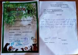 Первый диплом Лавбрил Ибарда. 12.05.18.