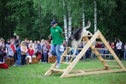 Светлана и Ельдар. Вилейка, 30.06.18. (8)