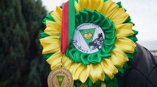 Розетка и медаль ДФ. 06.10.18.