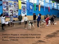 Лавбрил Жадир в БЕСТ. Минск, 17.03.19