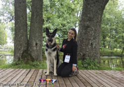 ВЕОЛавбрил Кайар. 11 месяцев