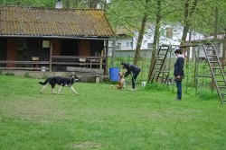 Лавбрил Камира 7 мес. на занятиях 4