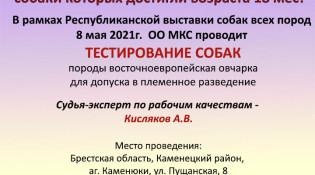 Объявление о тестировании, Брест. 08.05.2021г